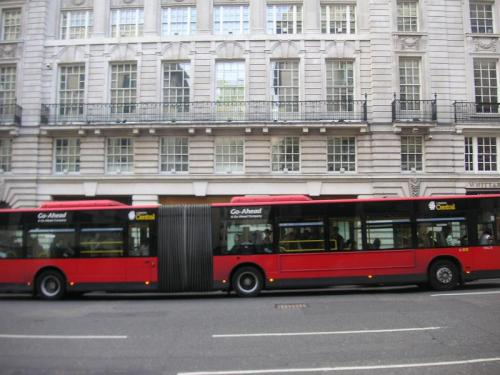 double_bus.jpg
